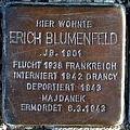 StolpersteinMagdeburgBlumenfeldErich.jpg