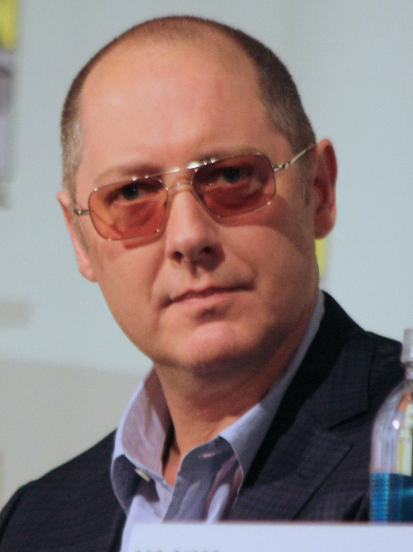 James Spader  - 2020 Light brown hair & casual hair style.