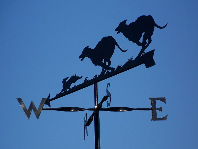 Weathervanes >> File:Weather vane, Frogham - geograph.org.uk - 1111581.jpg ...