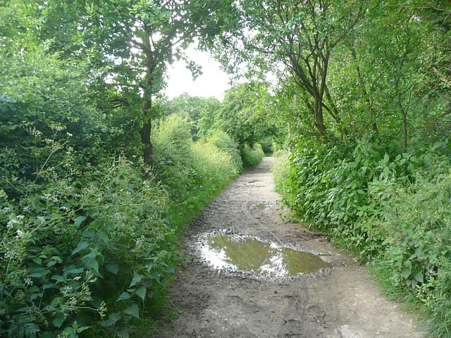 Bridleway alongside Tyersal Beck, Tong - geograph.org.uk - 1381741