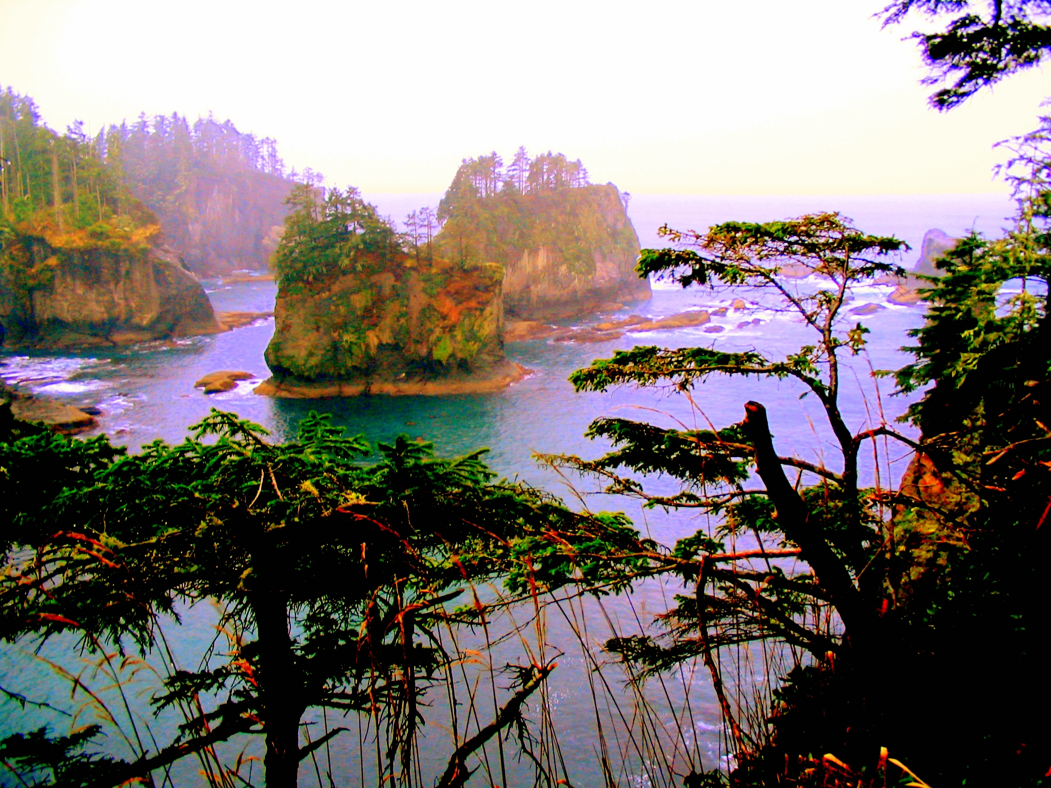 Neah Bay Travel Guide At Wikivoyage