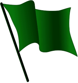 Flag green suck