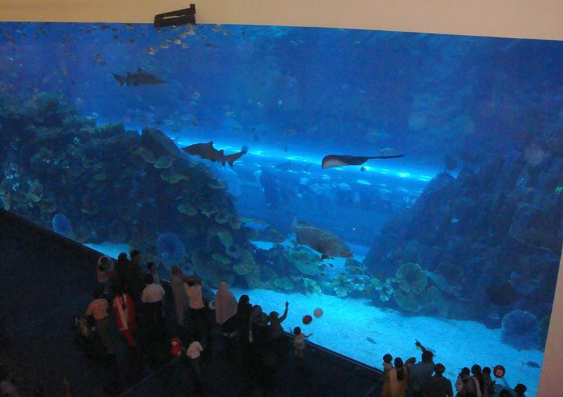 Аквариум (Дубай) — Википедия
