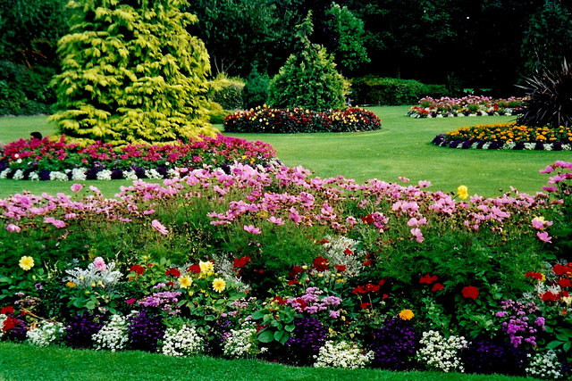 Landscaping - Keeping your Yard in Good Condition