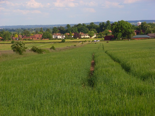 Farmland, Cookham - geograph.org.uk - 857217