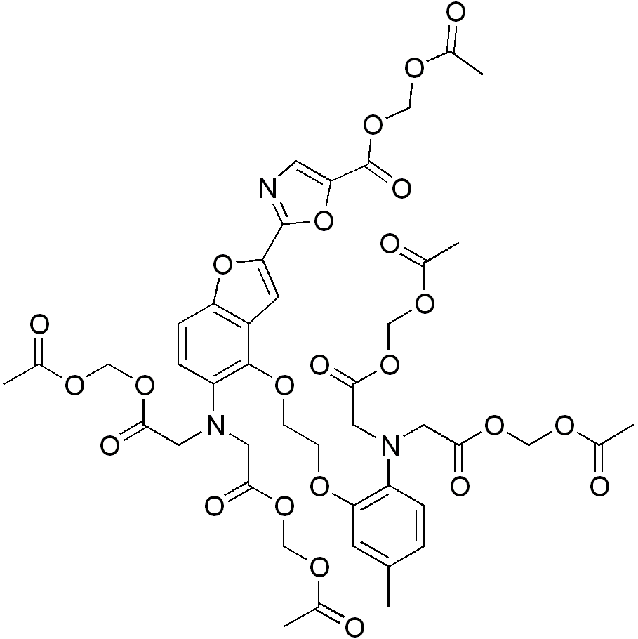 fura-2-acetoxymethyl ester