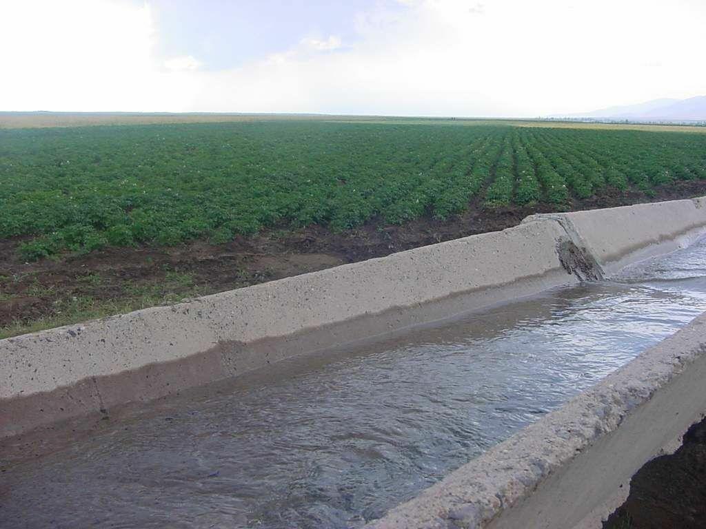 Արարատի մարզում երեխա է ընկել ջրանցքը