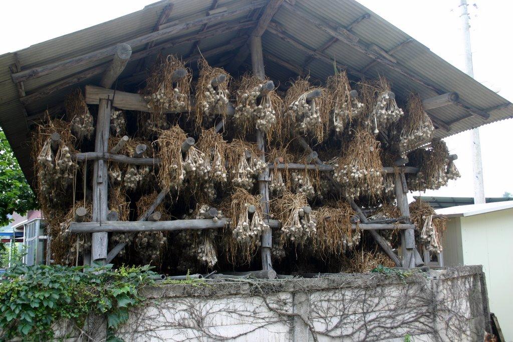 File Korea Uiseong County Changgilri Garlic Storage 01 Jpg