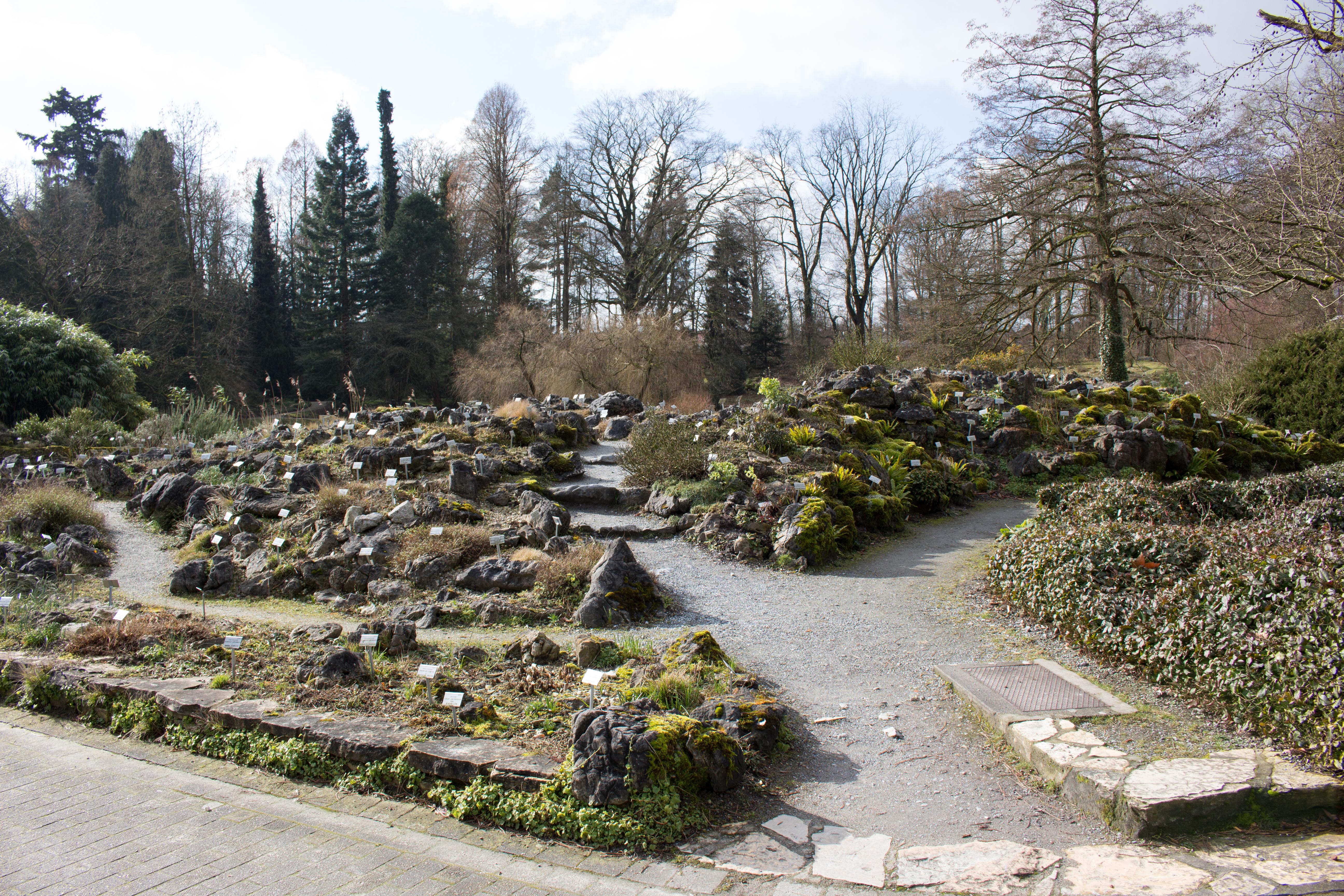 Garten Münster file münster schloss botanischer garten alpinum 01 jpg wikimedia