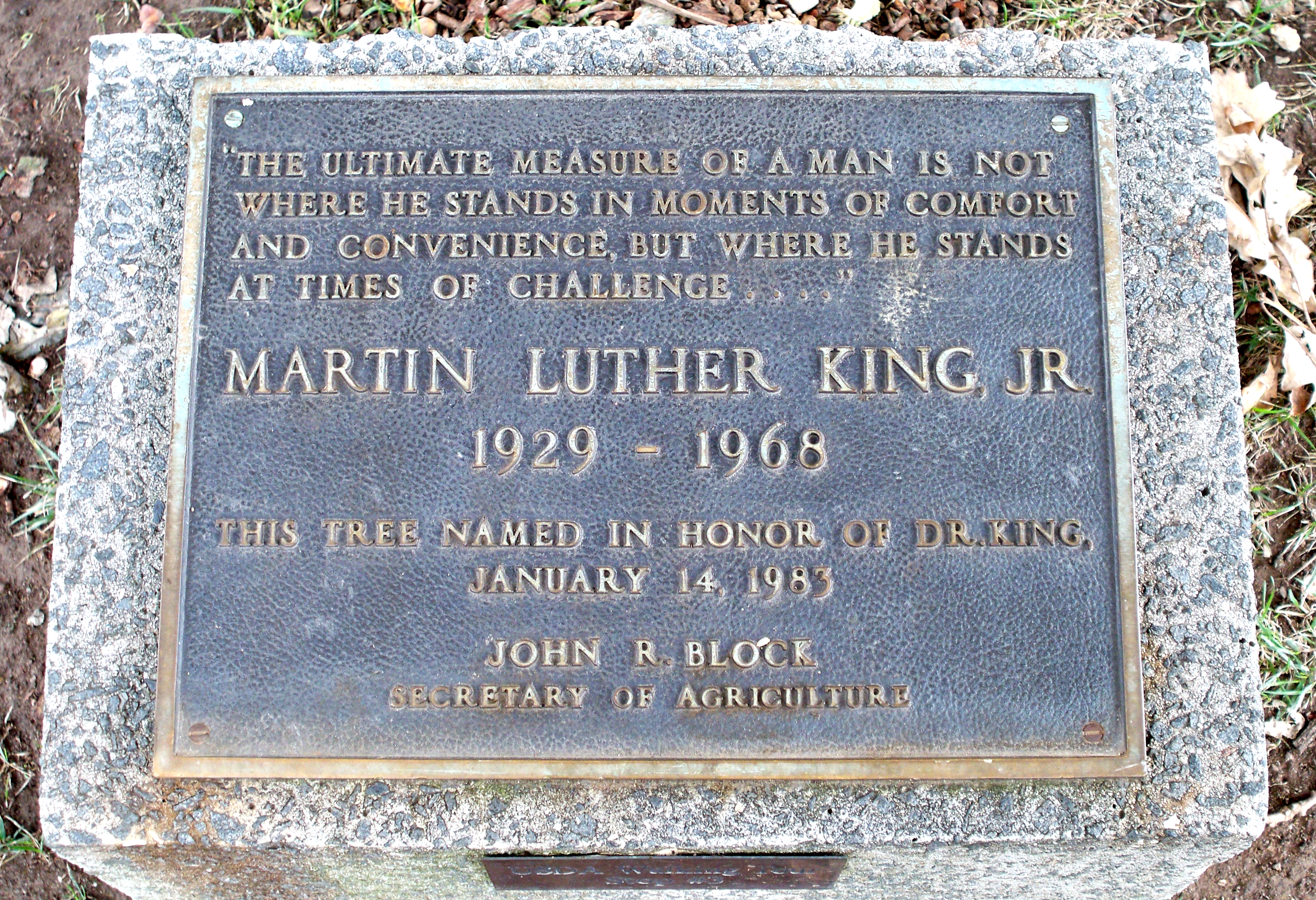 Martin luther king jr date of birth in Sydney