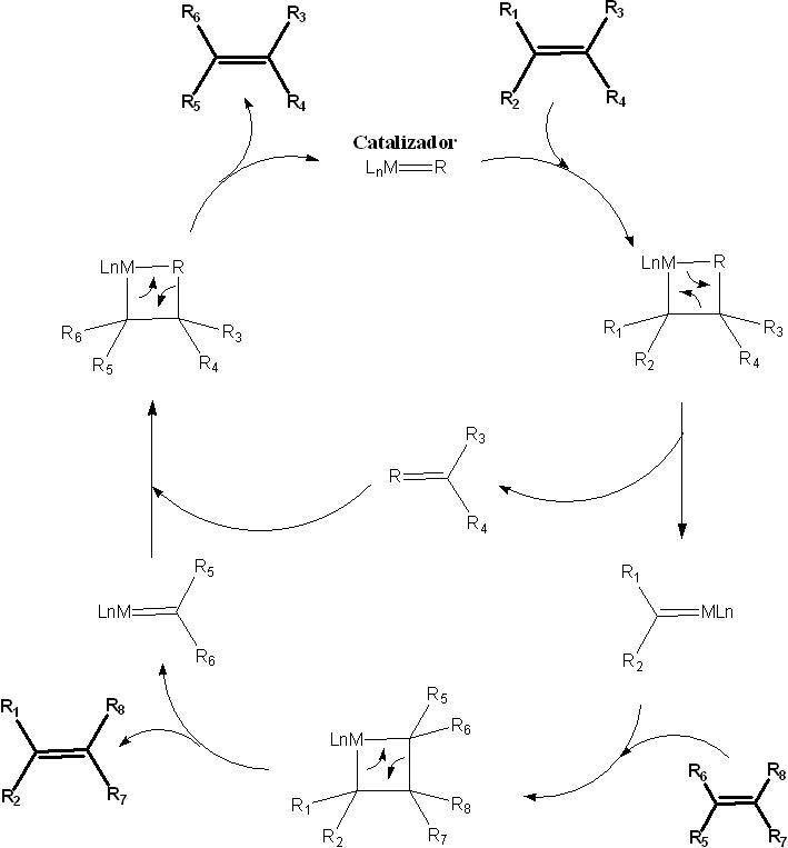 Metathesis mechanism