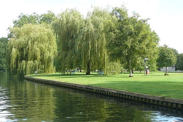 Park at Runnymede - geograph.org.uk - 948668