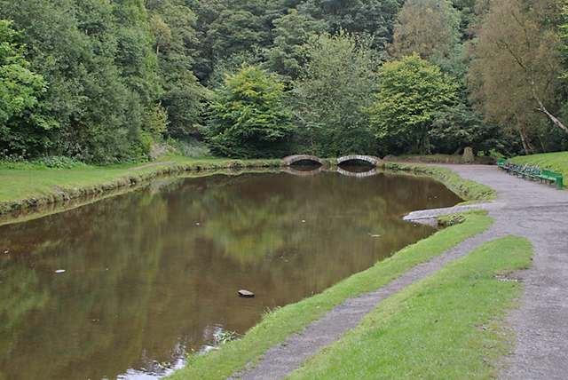 Pond in the wood - geograph.org.uk - 553532