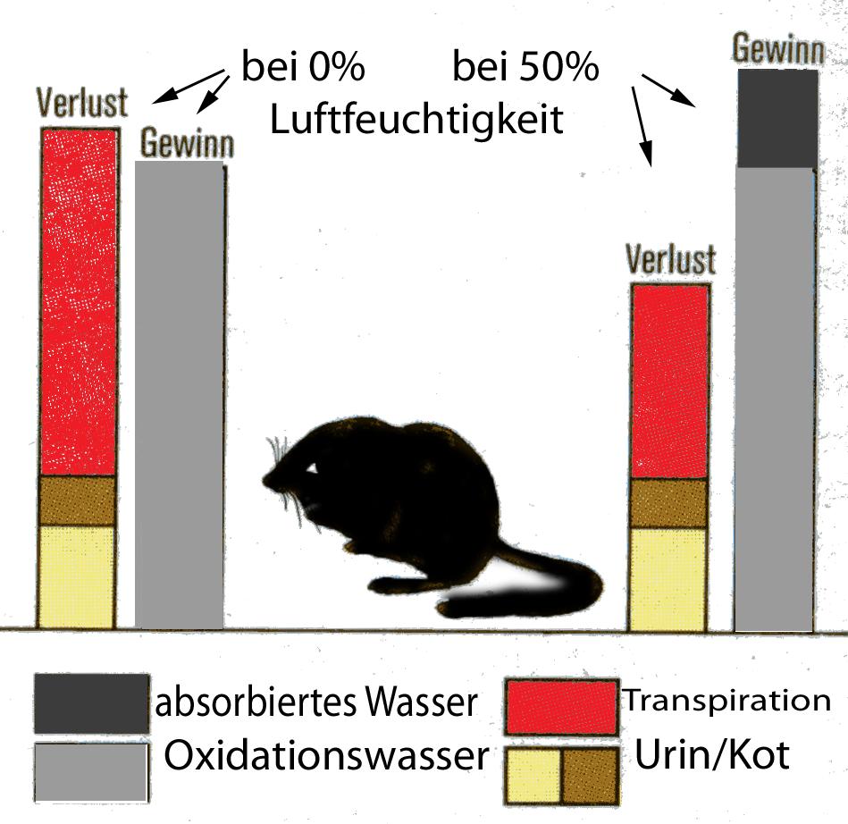 oxidationswasser  u2013 wikipedia