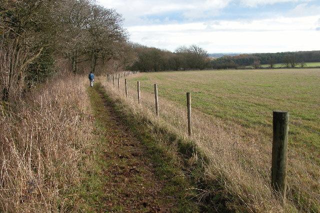 The Wardens' Way near Deadmanbury Gate - geograph.org.uk - 87930