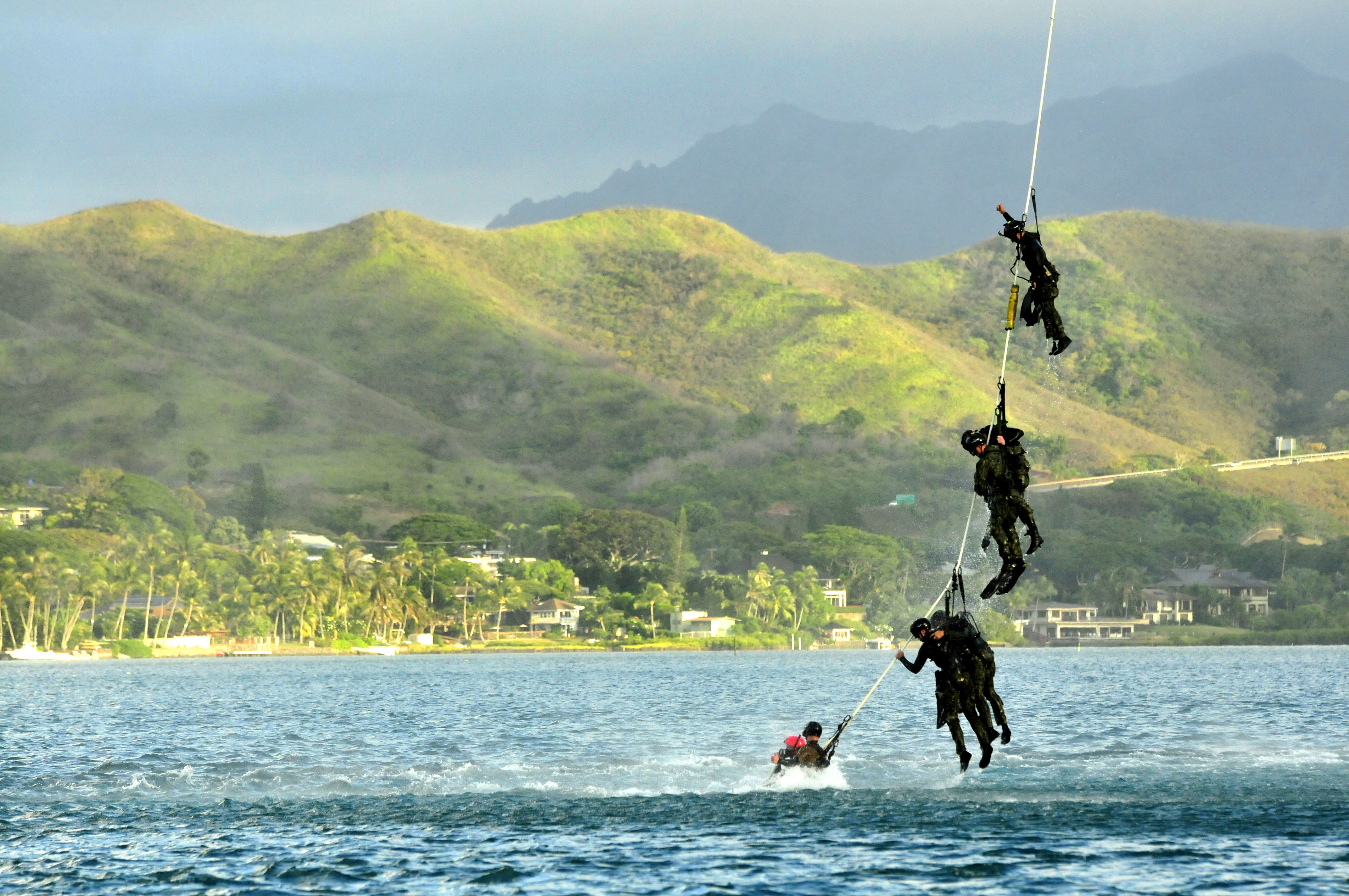 file u s  navy divers with the u s  navy seal delivery