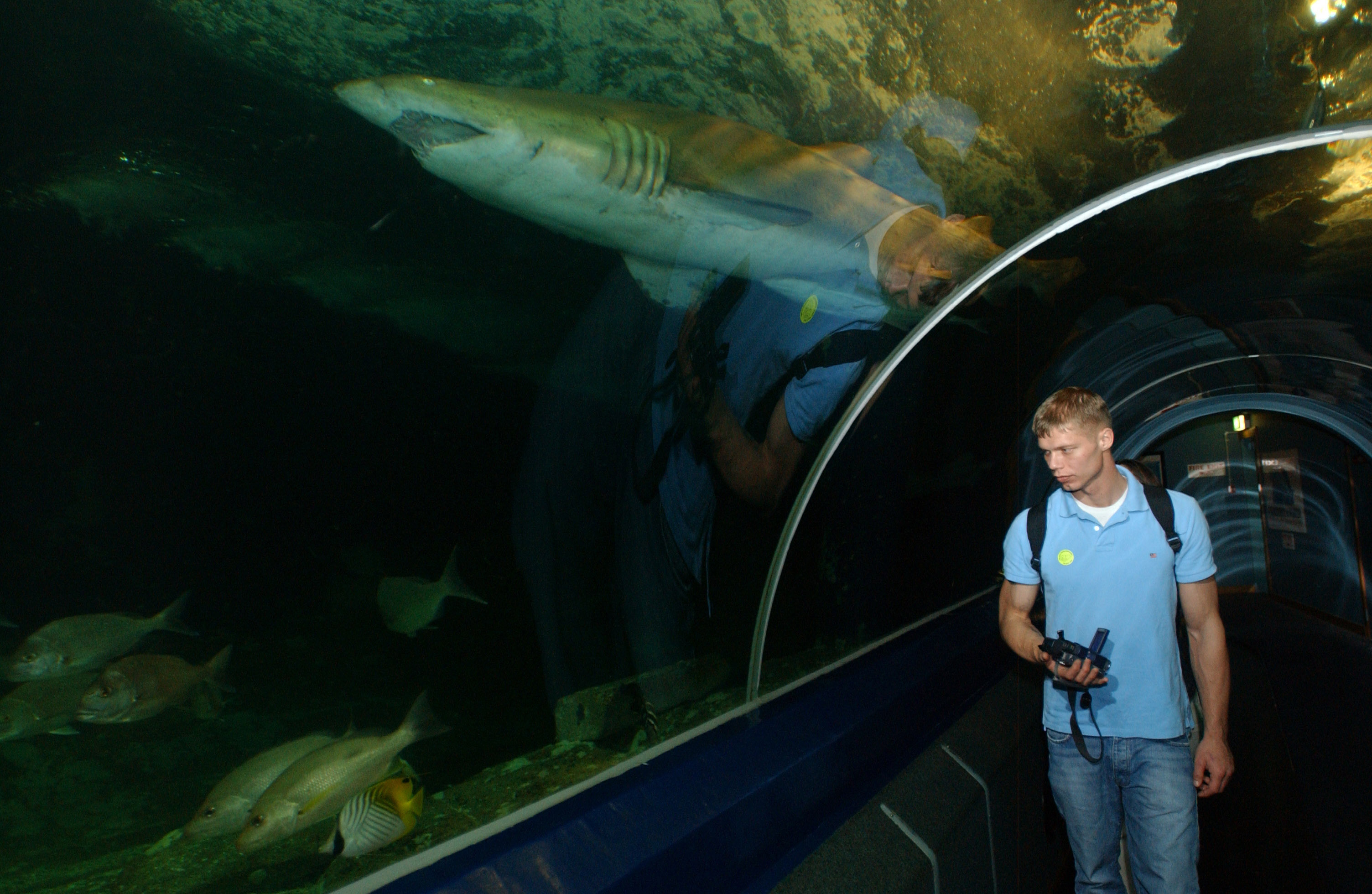 Fish aquarium in brisbane - File Us Navy 060125 N 2959l 092 Airman Marcus Geisler From Lake