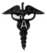 United States Army Ambulance Service, Early Insignia.png