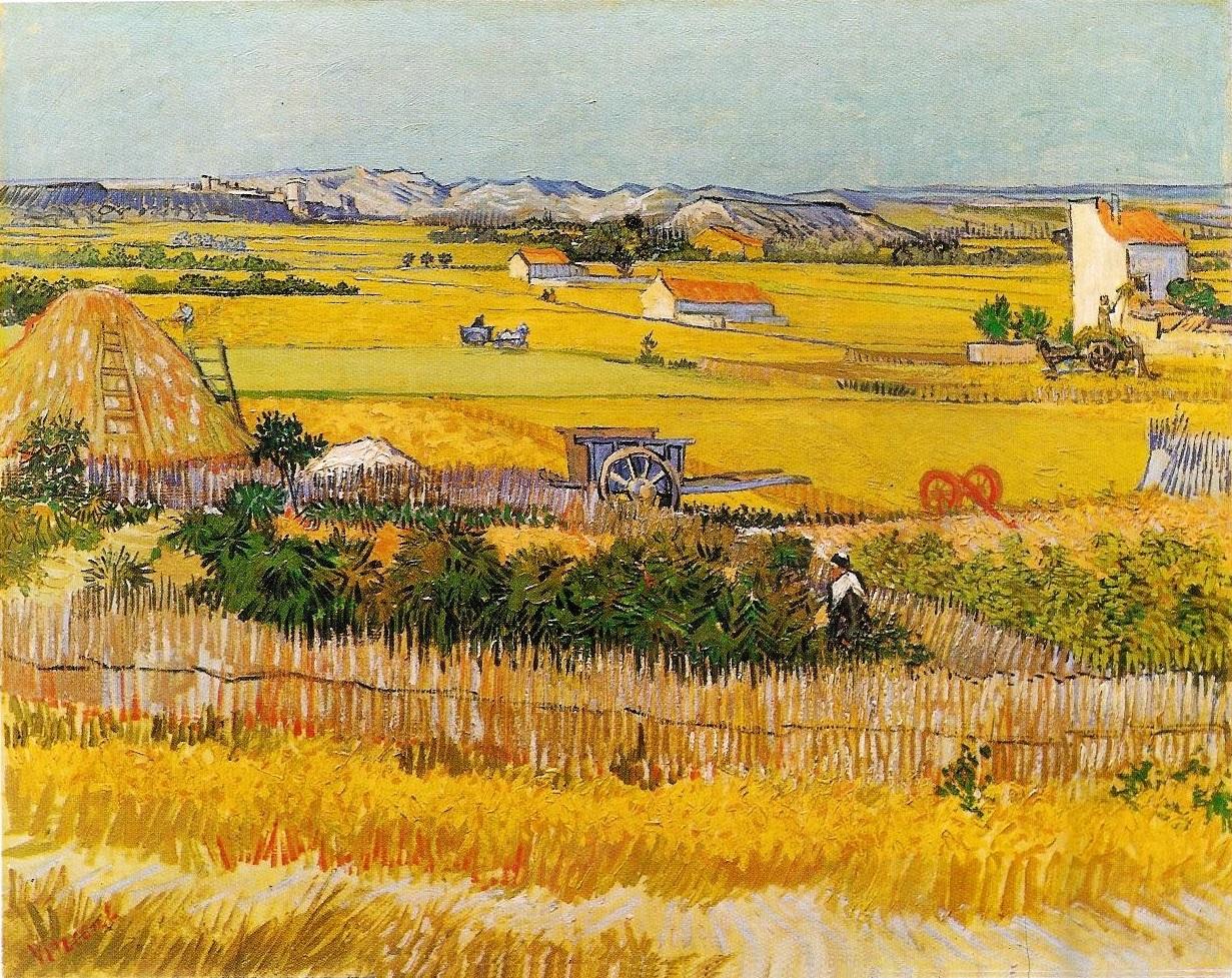 Frank Zweegers Landschappen schilderen - van Gogh La Crau