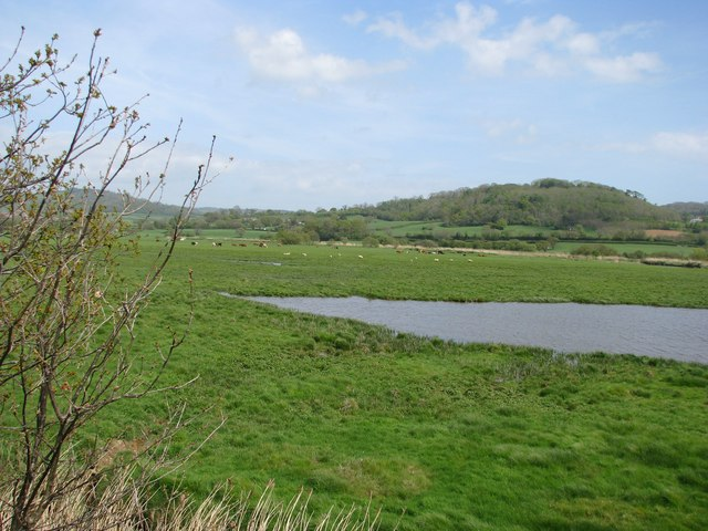 Wetlands of the Axe estuary - geograph.org.uk - 1285509