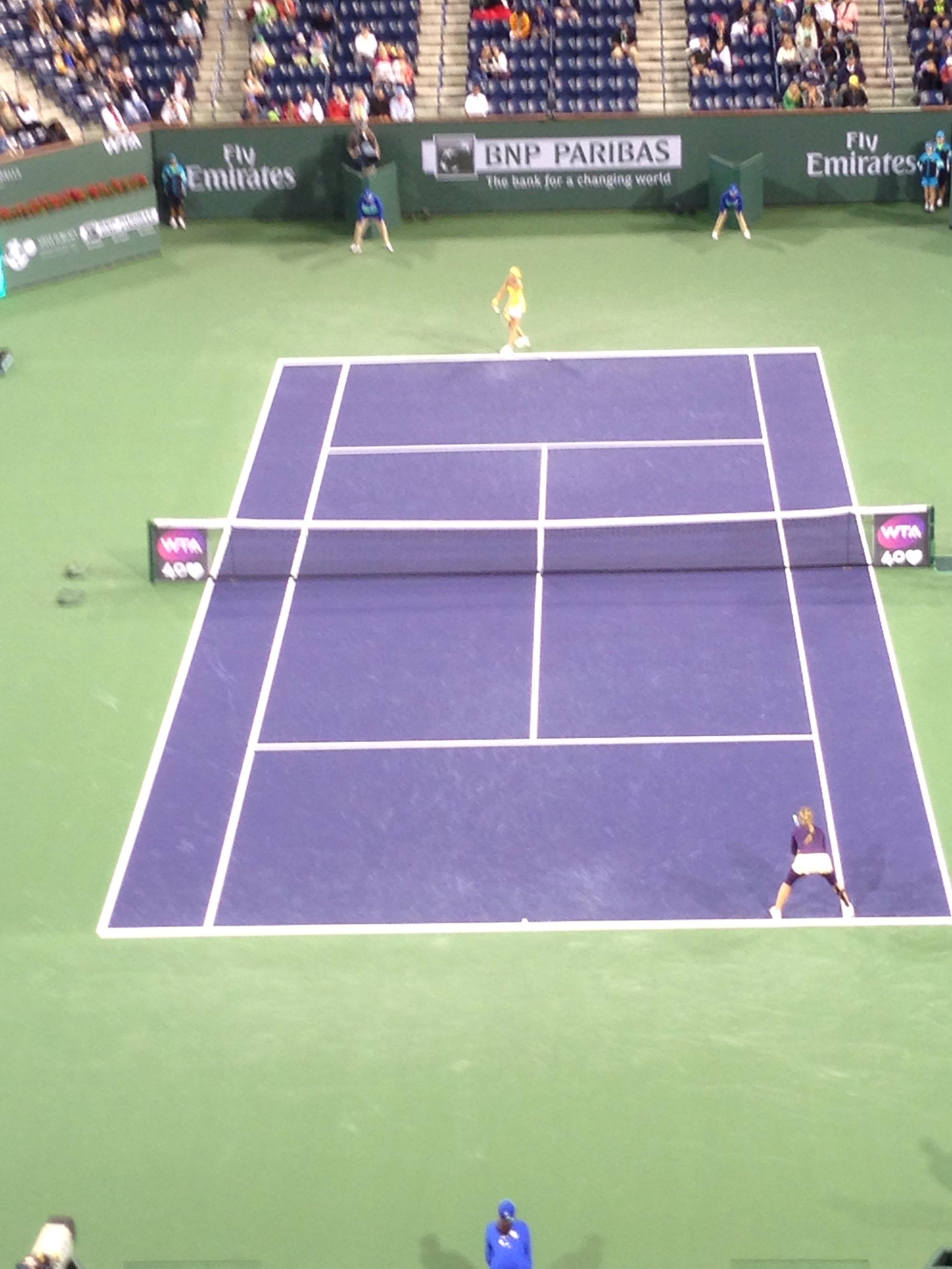 Purple Tennis Court Shoes Men S
