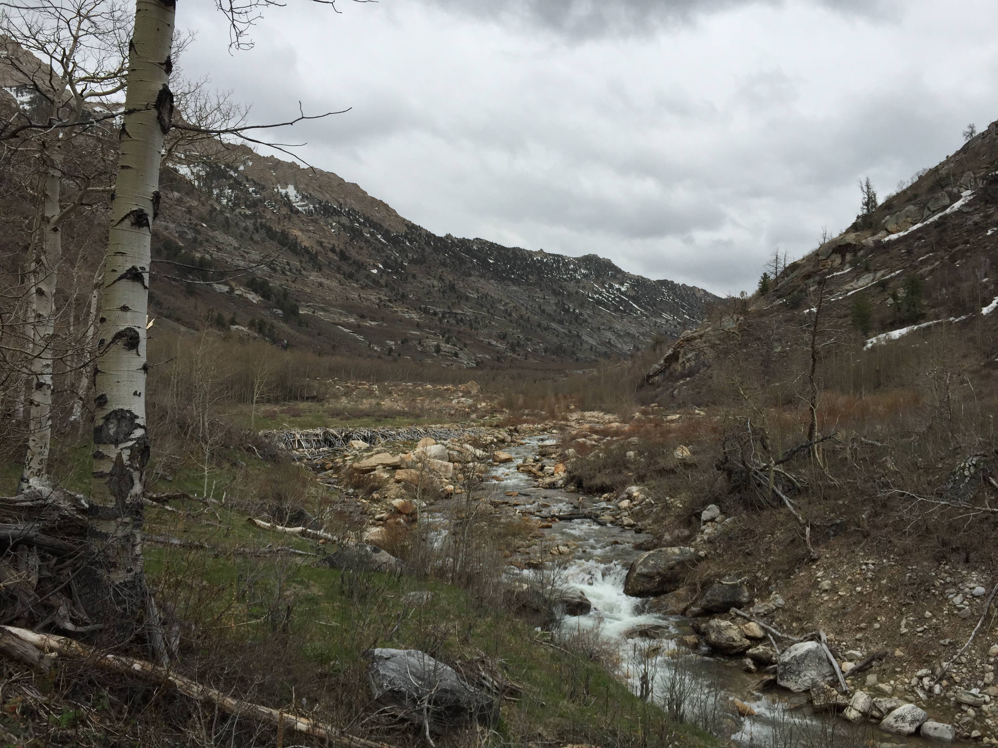 File 2015 05 06 15 15 46 View South Up Lamoille Creek From