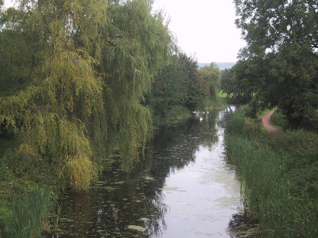 A Peaceful Reach of the Grand Western Canal - geograph.org.uk - 979271