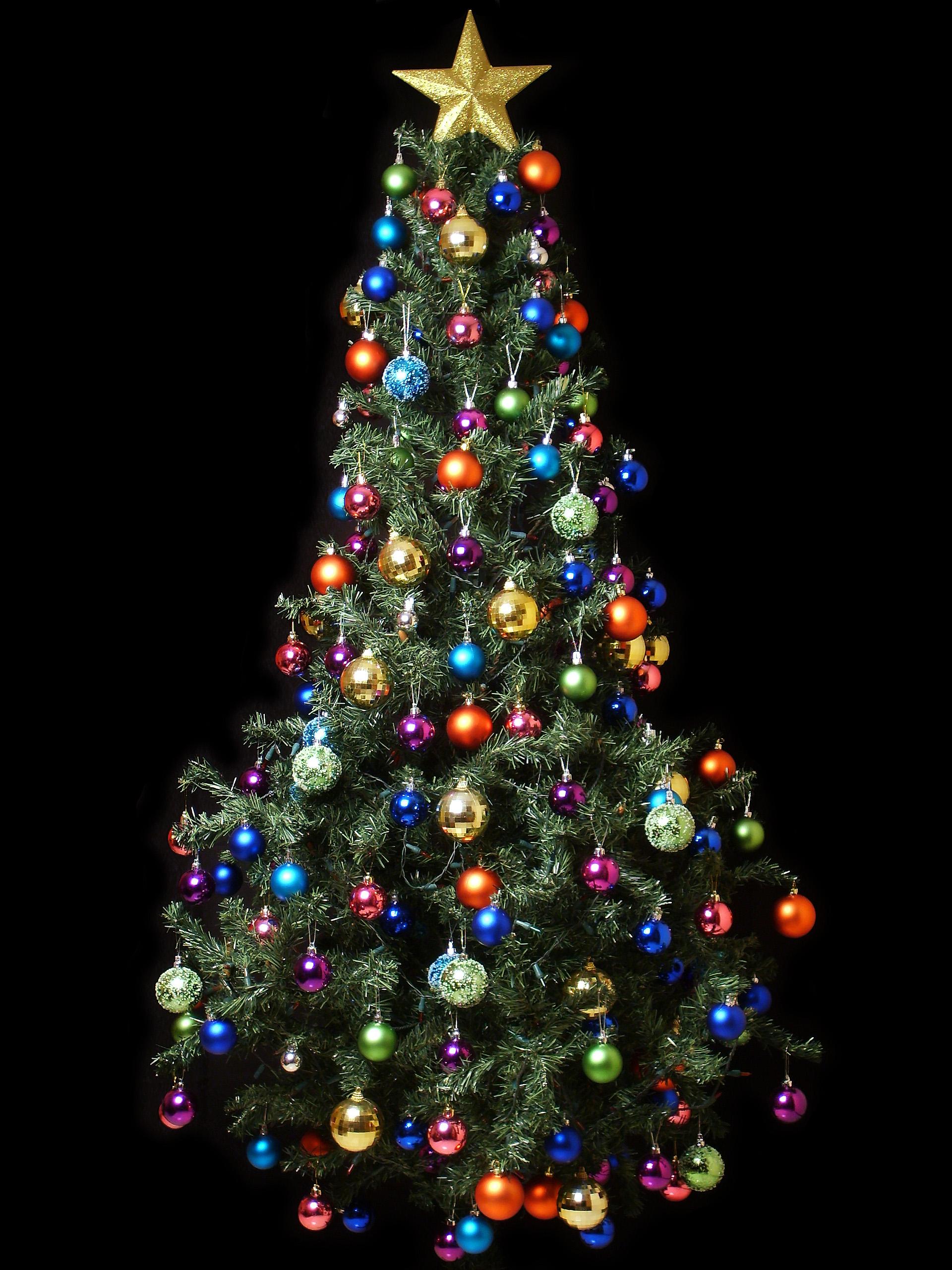 ΠΡΟΣΟΧΗ!!!το δέντρο είναι κλεμμένο από το blog ΧΩΡΙΣ ΘΕΜΑ