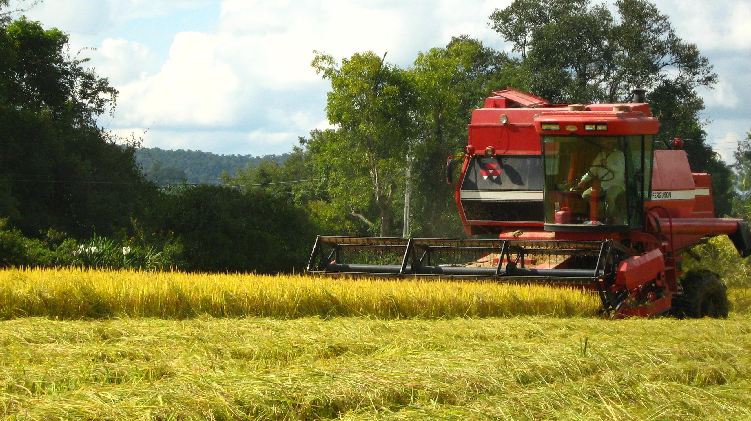 A agricultura e seus modelos produtivos