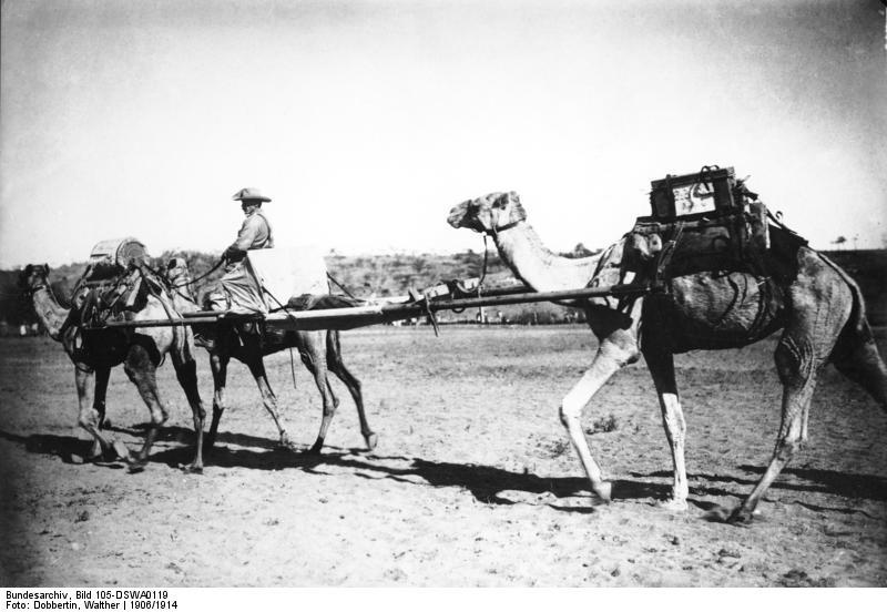 File:Bundesarchiv Bild 105-DSWA0119, Deutsch-Süd-Westafrika, Verwundetentransport.jpg