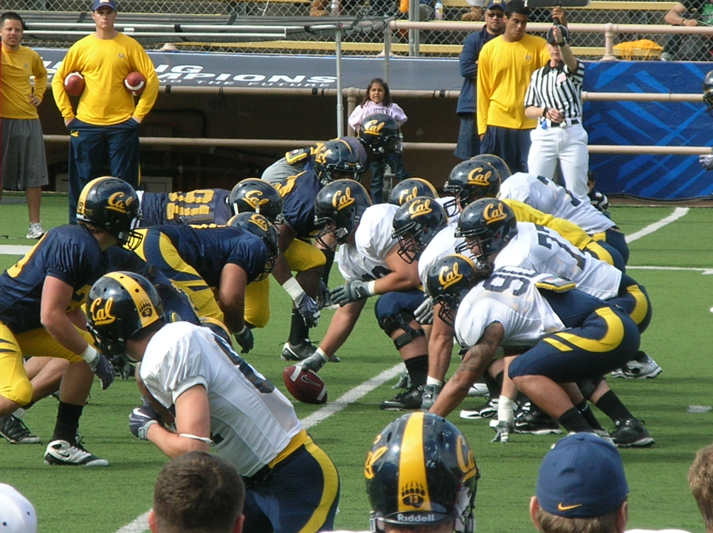 The California Golden Bears football team is the college football team of the University of California Berkeley The team plays its home games at California Memorial