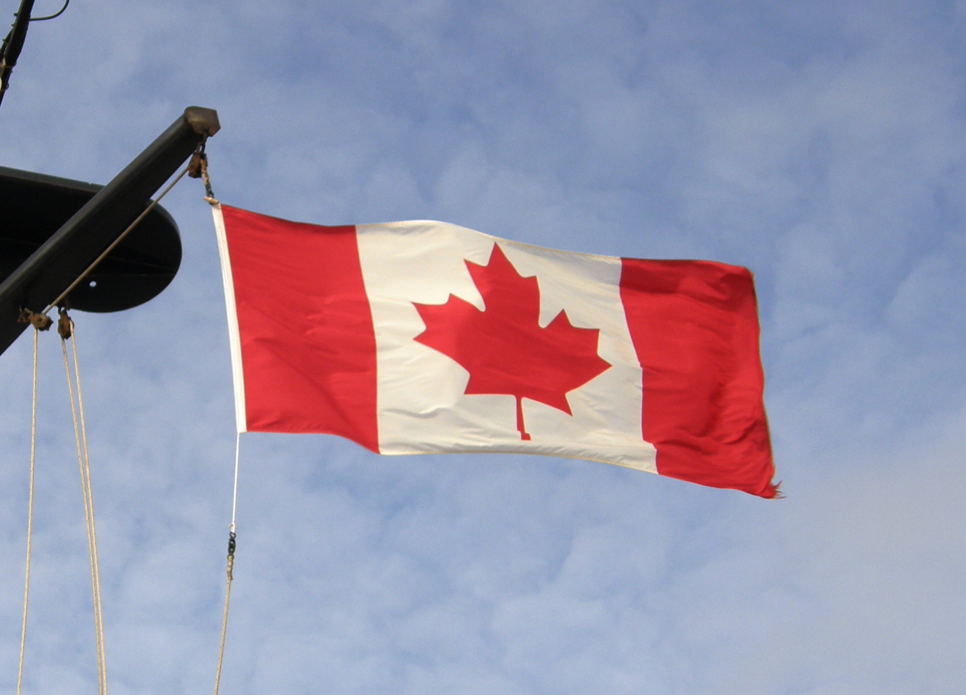canadian doge flag such - photo #47