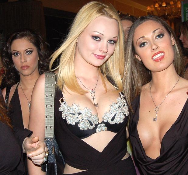Cassia Riley, Martina Warren, Melissa Jacobs at 2006 AVN Awards 1
