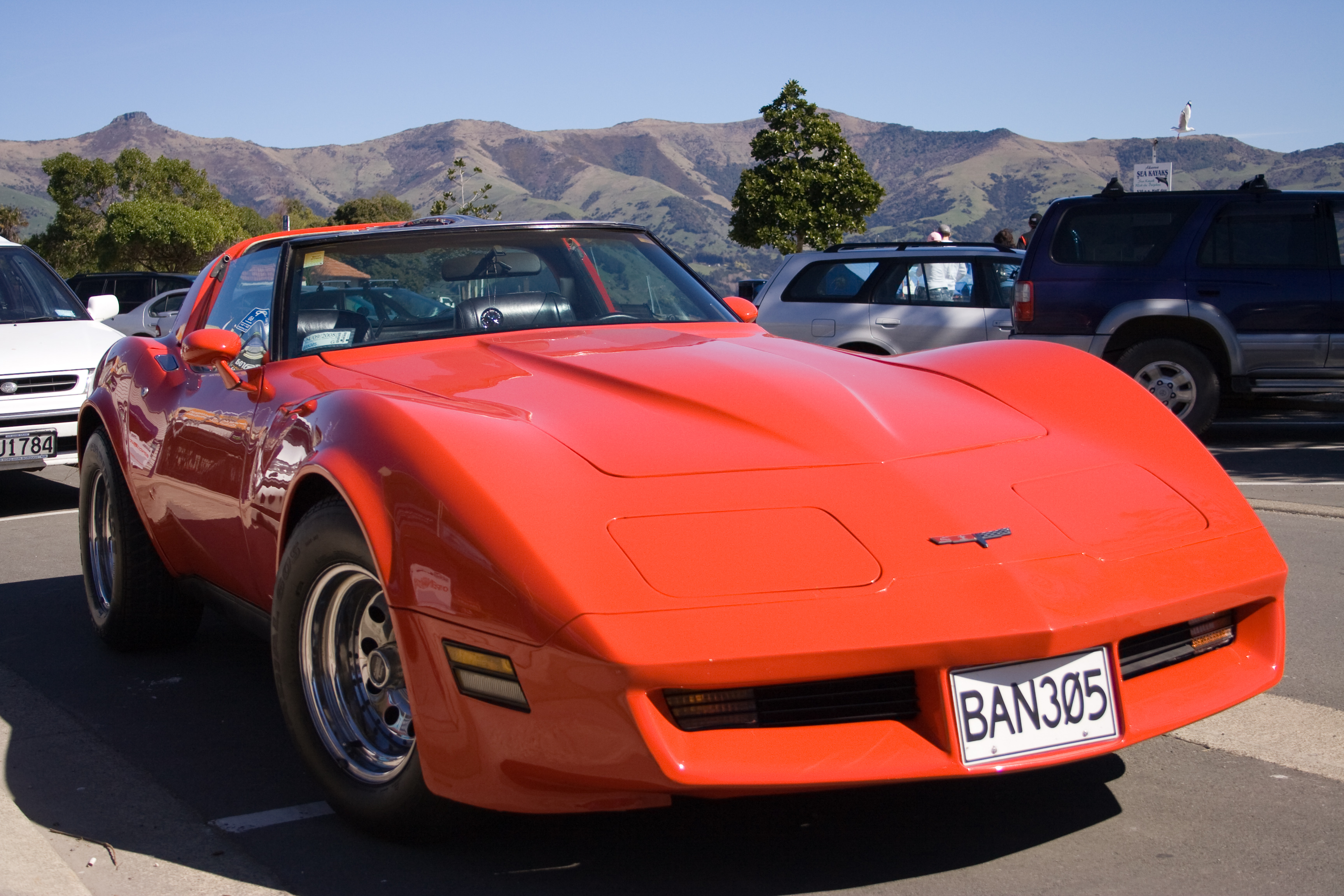 1980 chevrolet corvette c3 classic automobiles. Black Bedroom Furniture Sets. Home Design Ideas