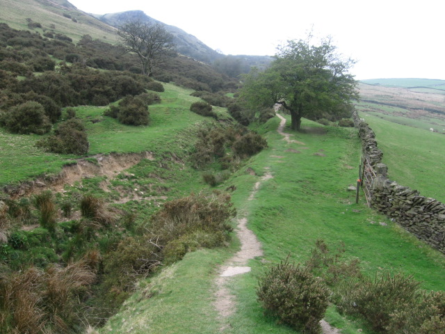 Footpath towards Cracken Edge - geograph.org.uk - 1251770