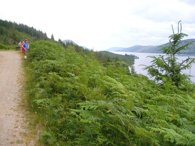 Great Glen Way - geograph.org.uk - 890263