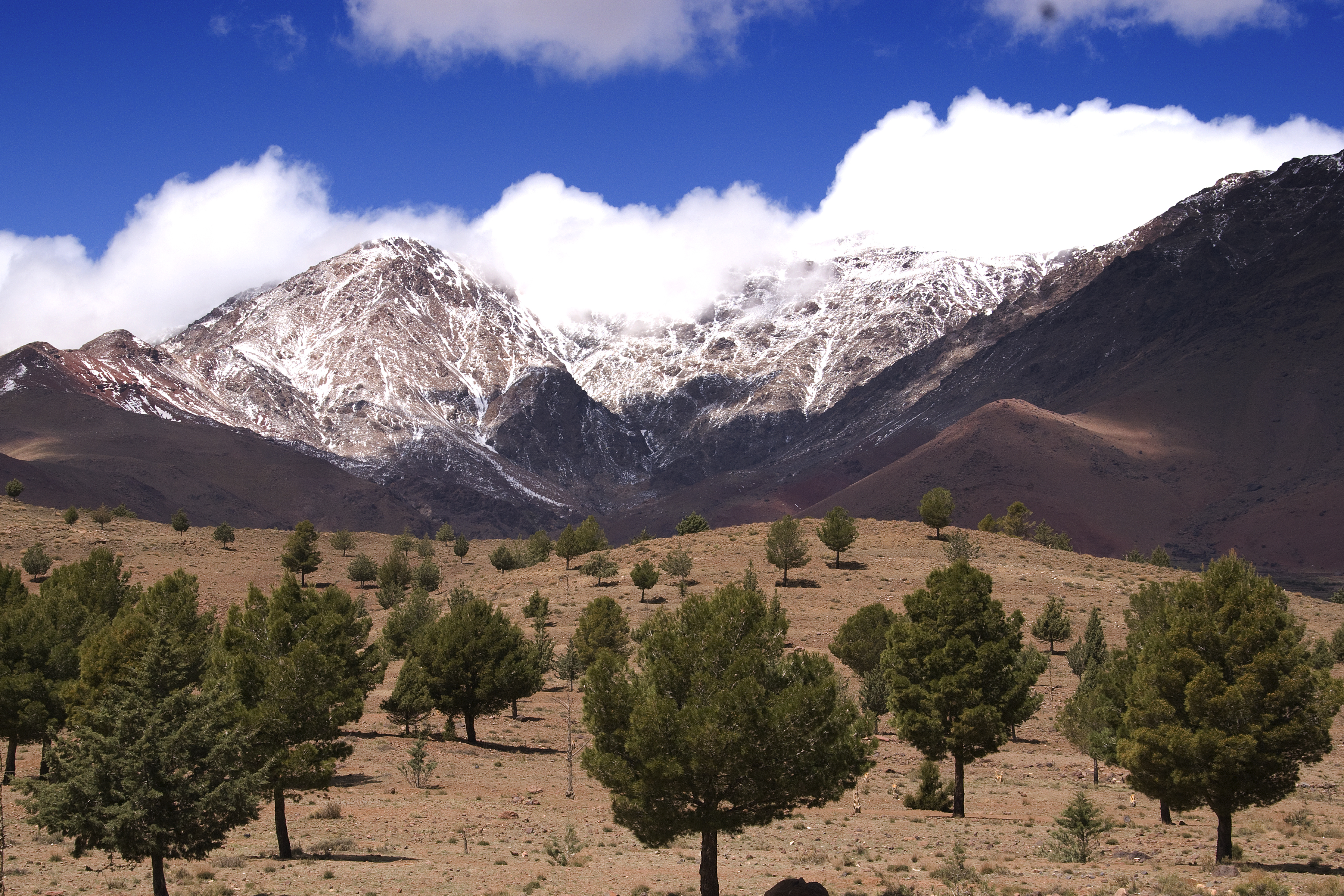 Picture Of Atlas Mountains, Check Out Picture Of Atlas ...