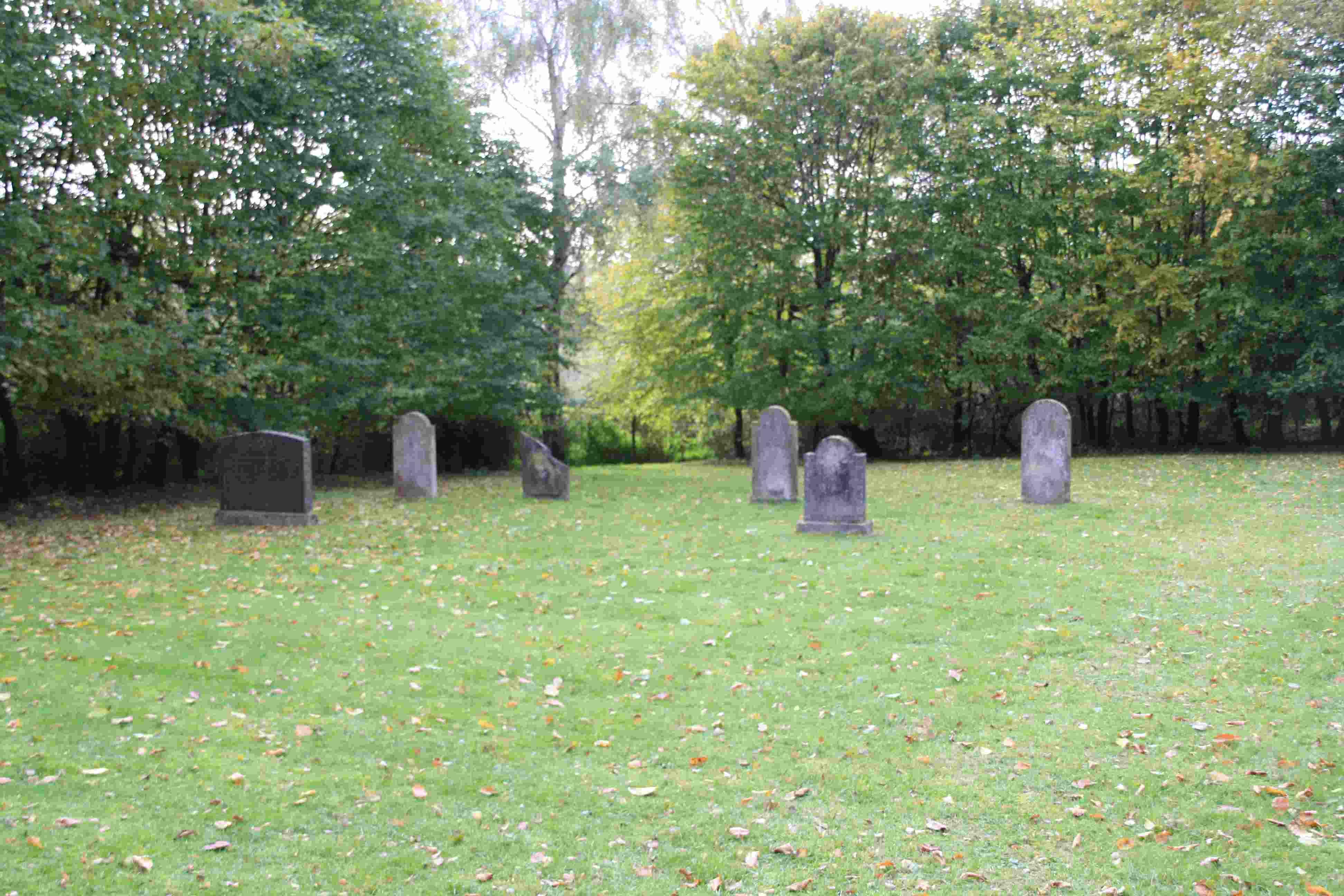 Jüdischer Friedhof (Friesheim)
