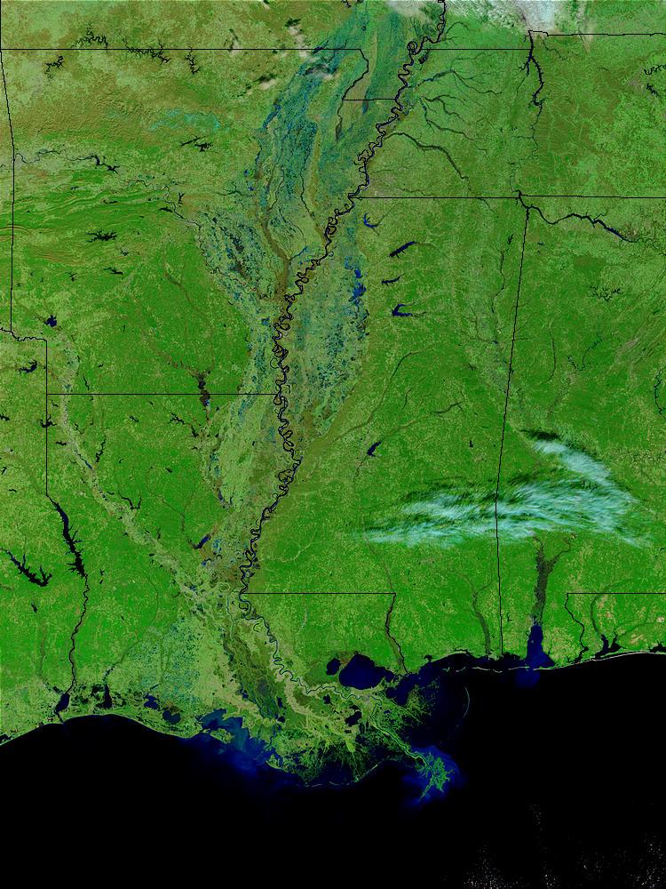 Satellitenaufnahme des unteren Mississippis