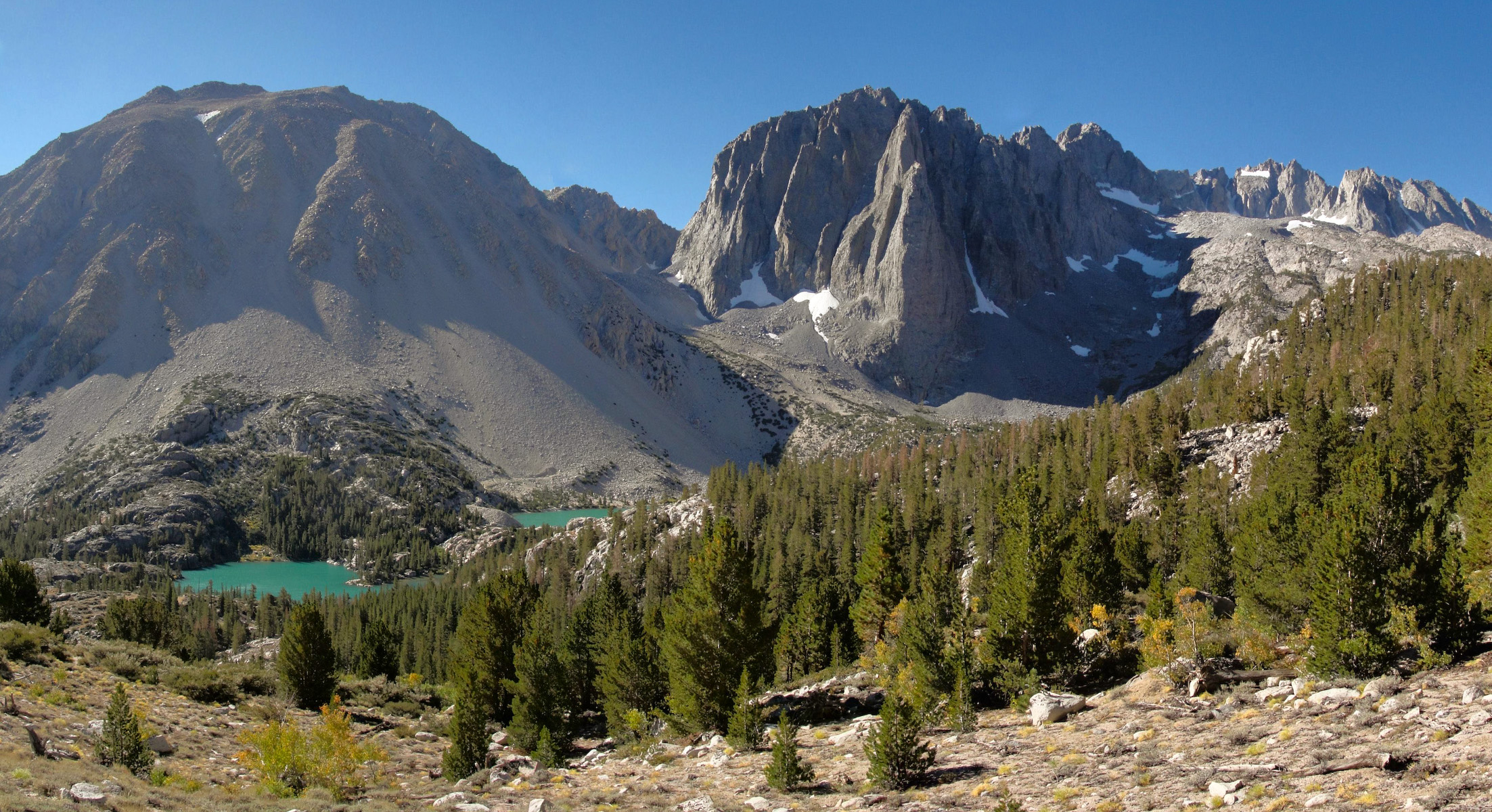 Ecology Of The Sierra Nevada Wikipedia