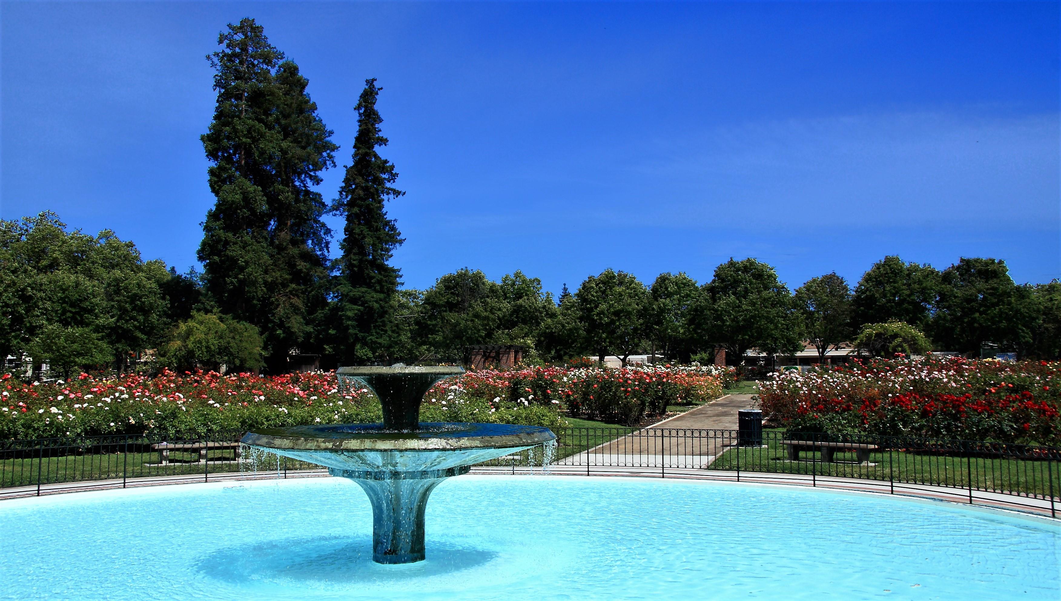 Municipal Rose Garden Fountain, San Jose.jpg