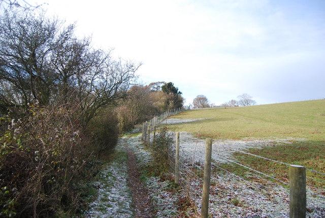 North Downs Way along the edge of Civiley Wood - geograph.org.uk - 2270838
