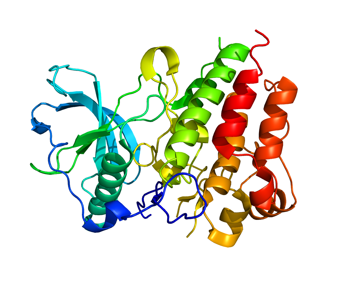 Colony Stimulating Factor 1 Receptor