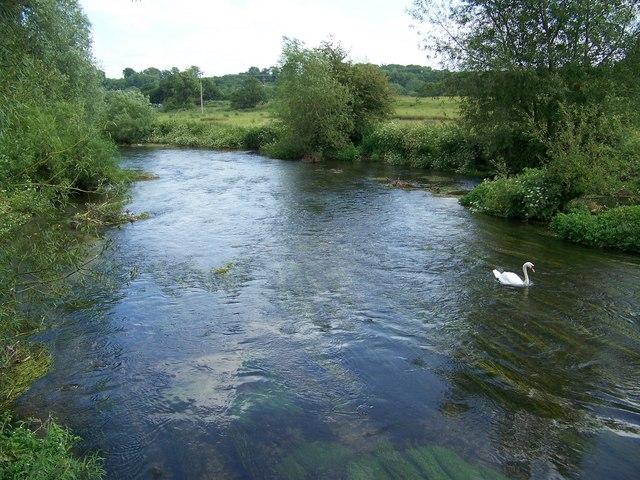 River Avon, Amesbury - geograph.org.uk - 864007