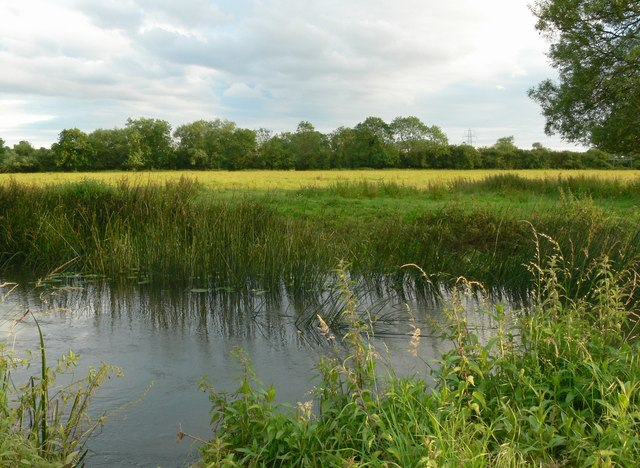 River Soar and pasture land - geograph.org.uk - 481703