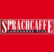 Image result for sprachcaffe languages plus