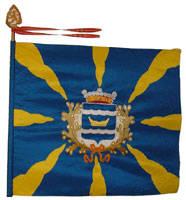 The Uusimaa Brigade flag.
