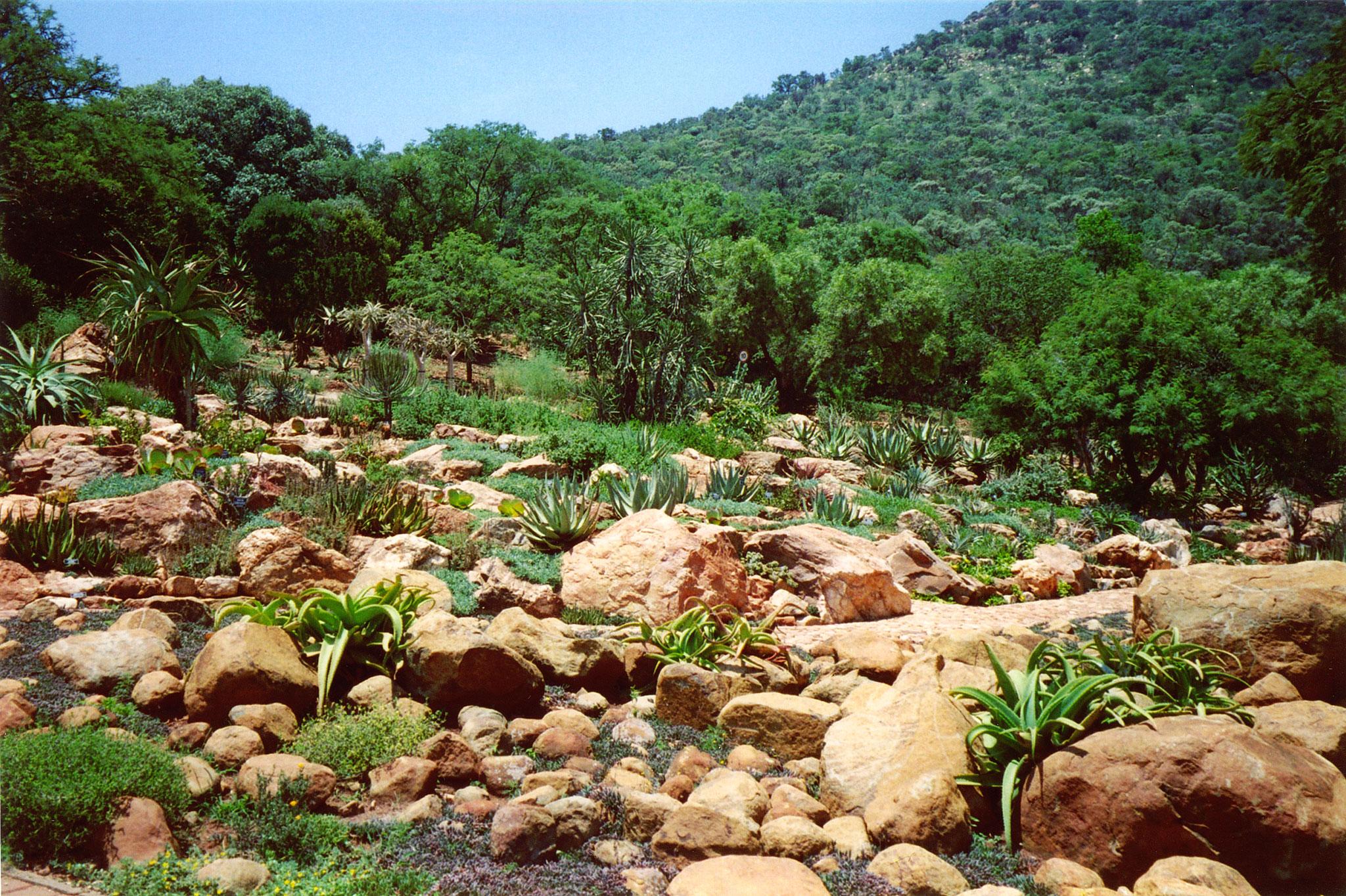 Description witwatersrand national botanical gardens