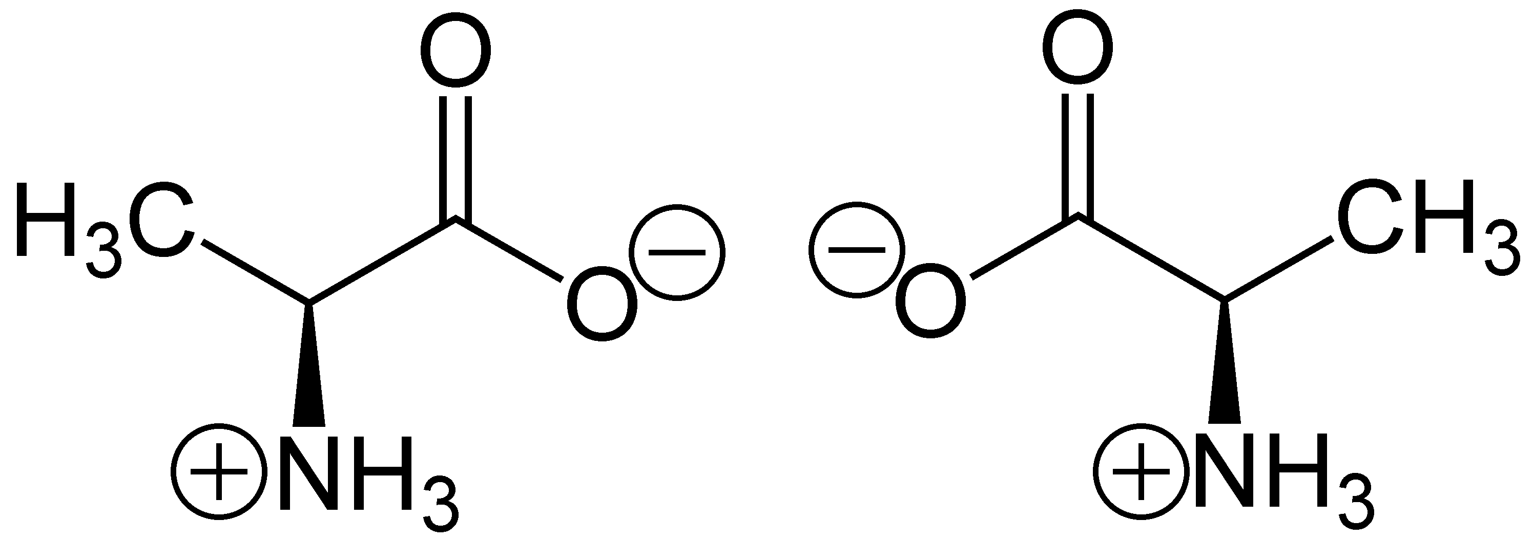File Zwitterion Alanine Png Wikimedia Commons