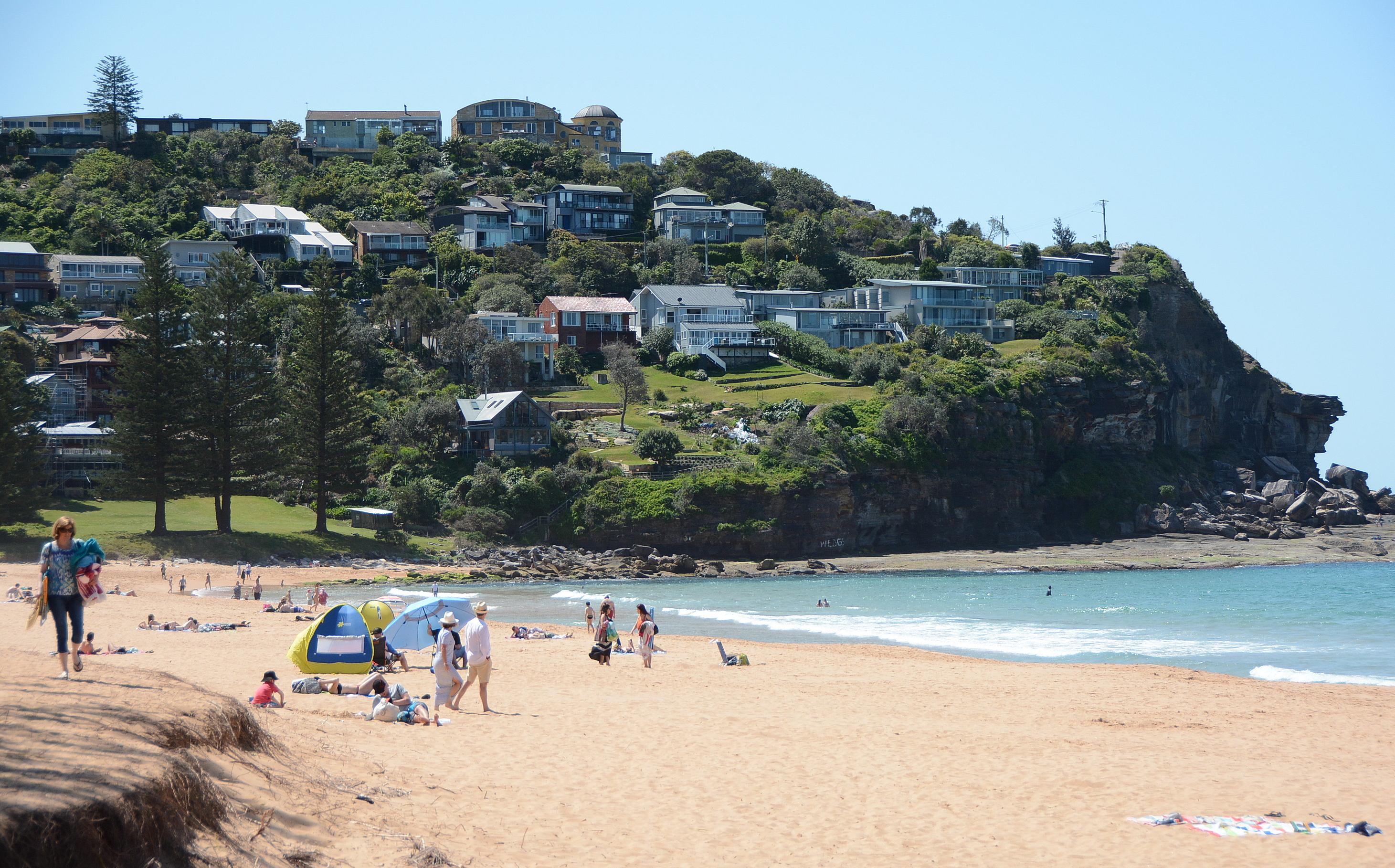 Whale beach nsw